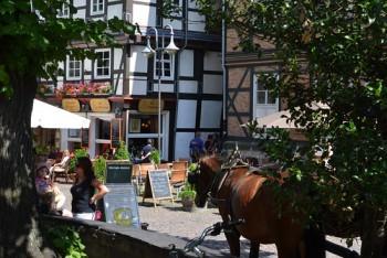 Hästskjuts i Goslar