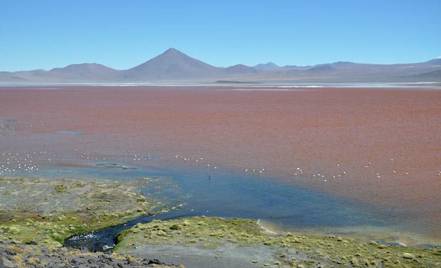Röda Sjön i södra Bolivia