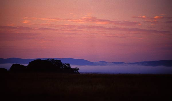Solnedgång i Masai Mara